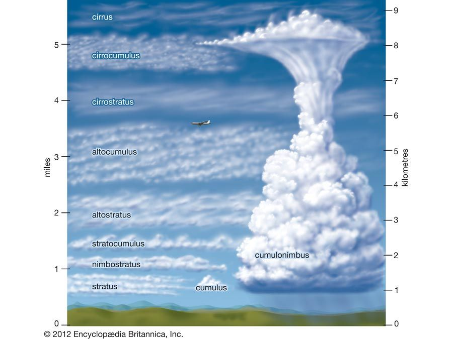 Different Types of Clouds I need to memorize so I stop taking ...