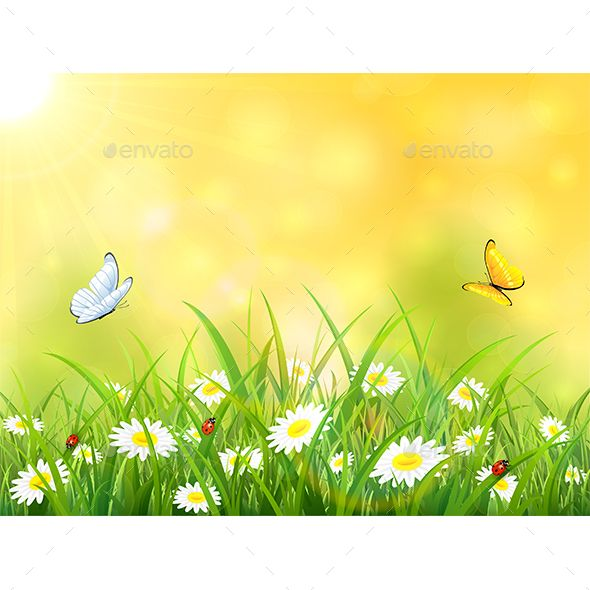 Yellow Nature Background With Sun And Butterflies Seasons Nature Download Here Https Graphicriver Net Item Y Nature Backgrounds Nature Vector Background