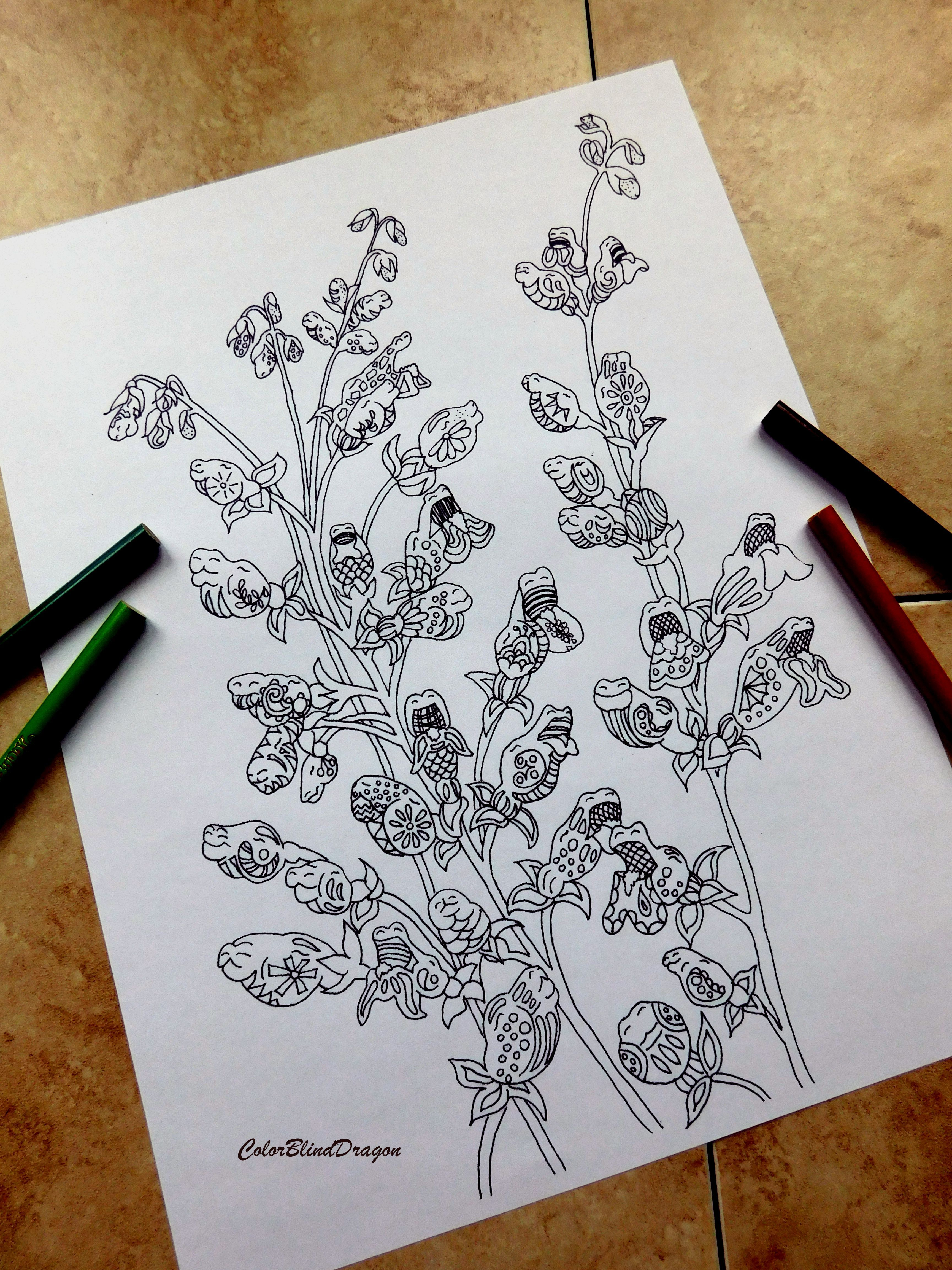 52 flowers coloring pages coloring pages kids pages flowers