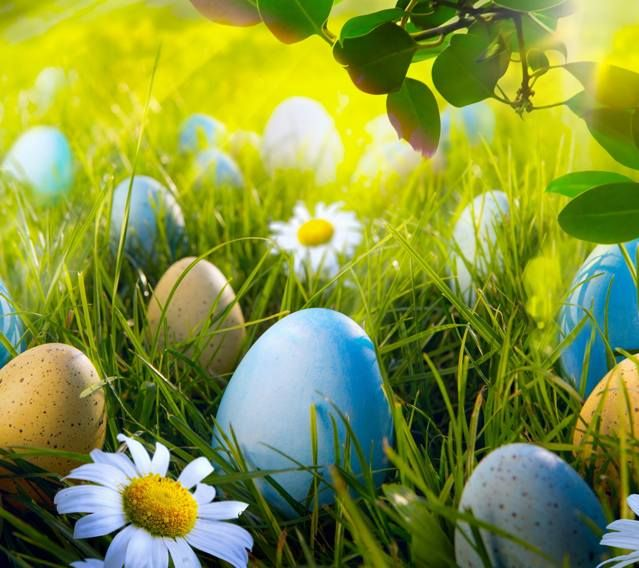Zedge Free Downloads For Your Cell Phone Free Your Phone Easter Wallpaper Happy Easter Wallpaper Easter Backgrounds