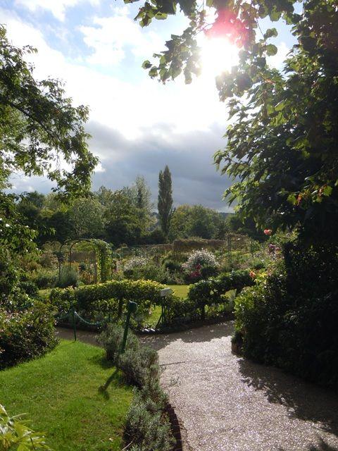 Monet's Garden / after the storm