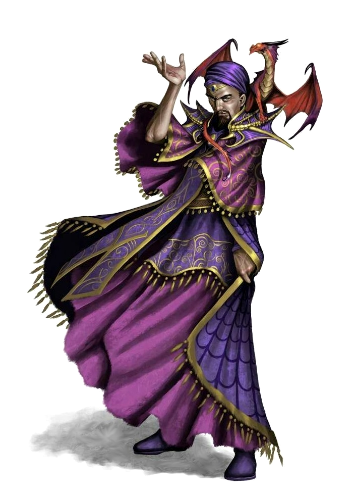 Human Male Wizard with Familiar - Pathfinder PFRPG DND D&D