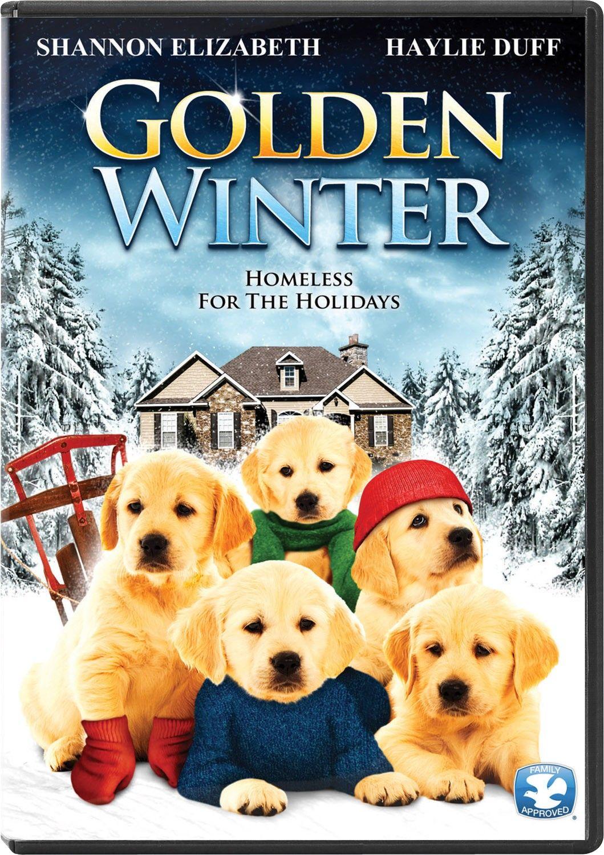 In Golden Winter I A Little Boy Befriends A Litter Of Homeless