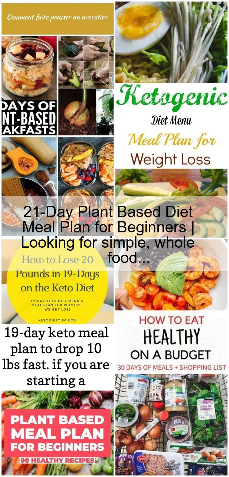 21 Day Plant Based Diet Meal Plan For Beginners Looking For Simple Whole Food Plantbasedrecipesforbeginners 21 Day Plant Based Diet Meal Plan For Beginne 2020