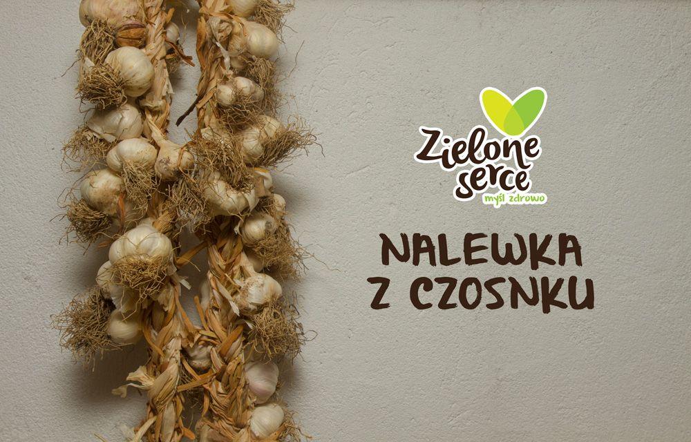 Nalewka czosnkowa – gorąco polecam. więcej https://www.facebook.com/zieloneserce575191123/photos/a.401895593347088.1073741831.400345923502055/447970865406227/?type=3&theater