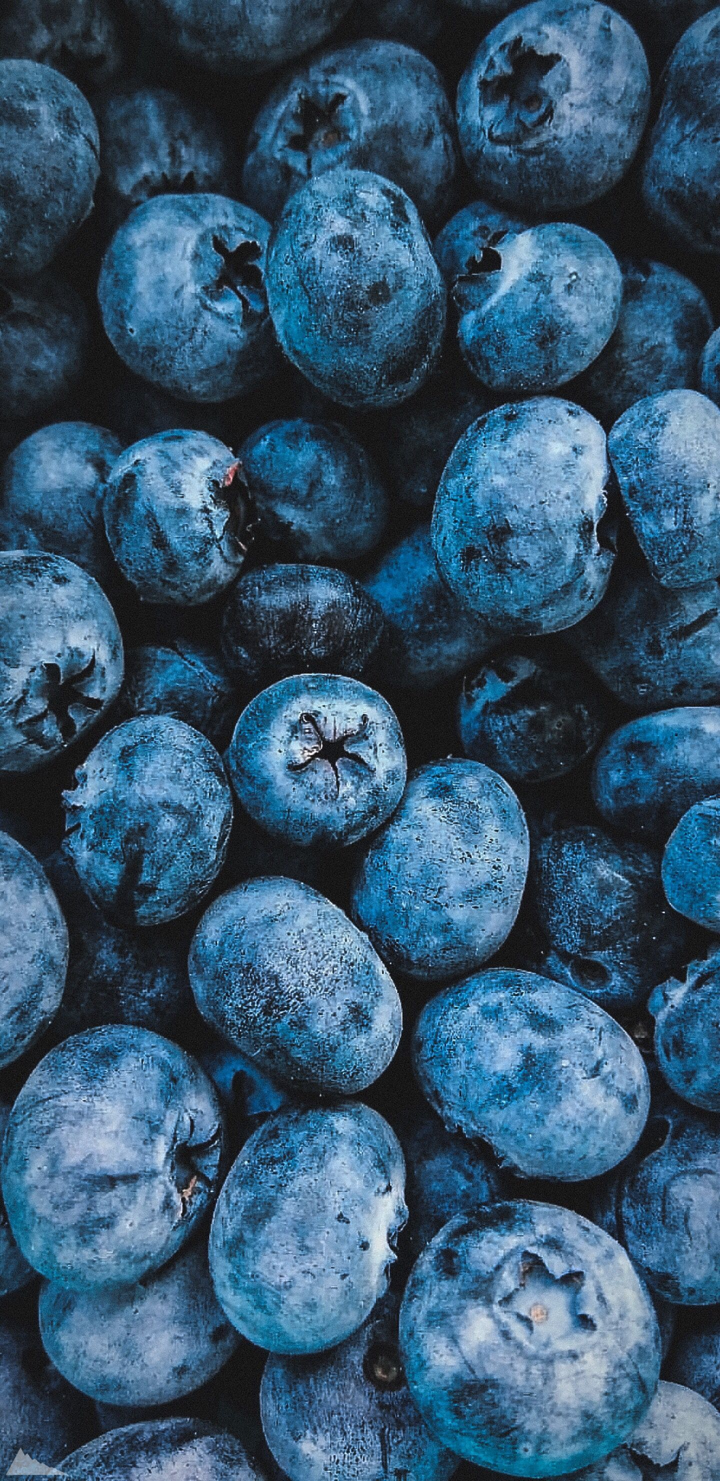 Wallpapers | Blueberries #lockscreeniphone # oboinatelefon wallpaper # # # oboidlyatelefona