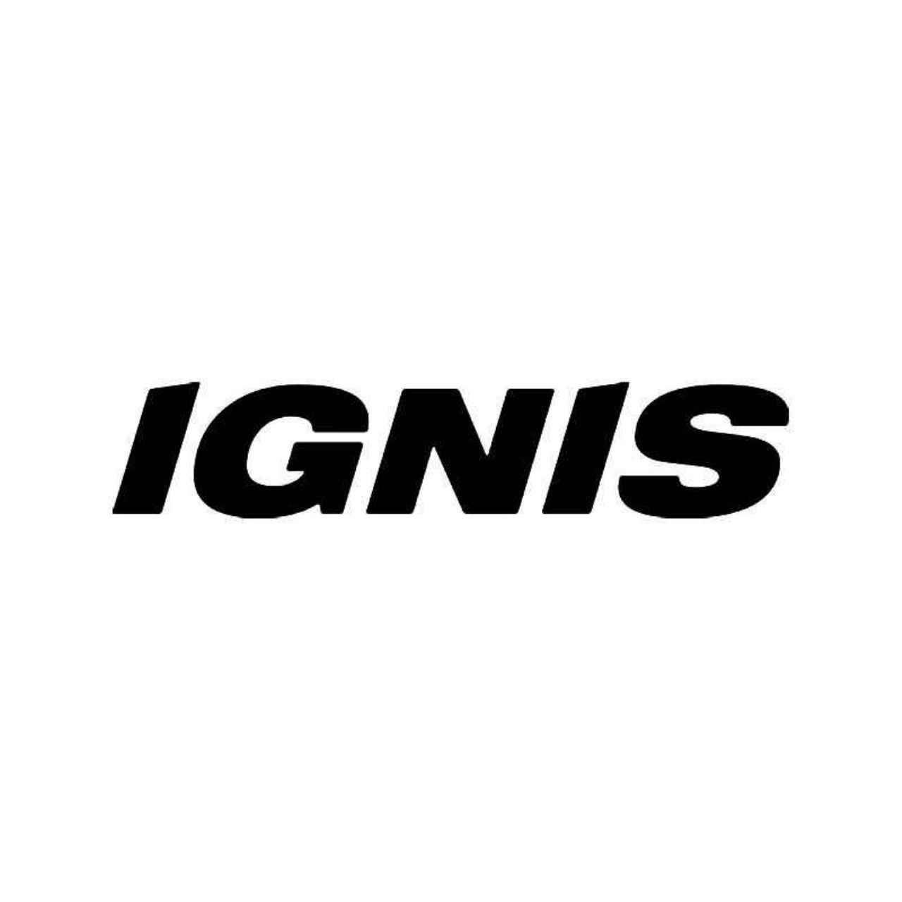 Ignis Logo Sticker