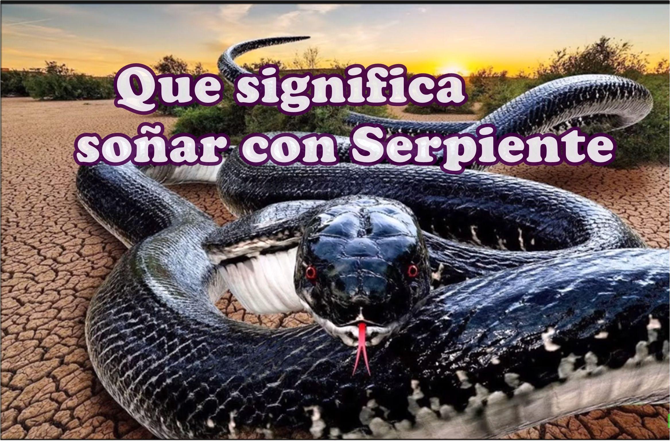 Qué Significa Soñar Con Serpiente Sueños