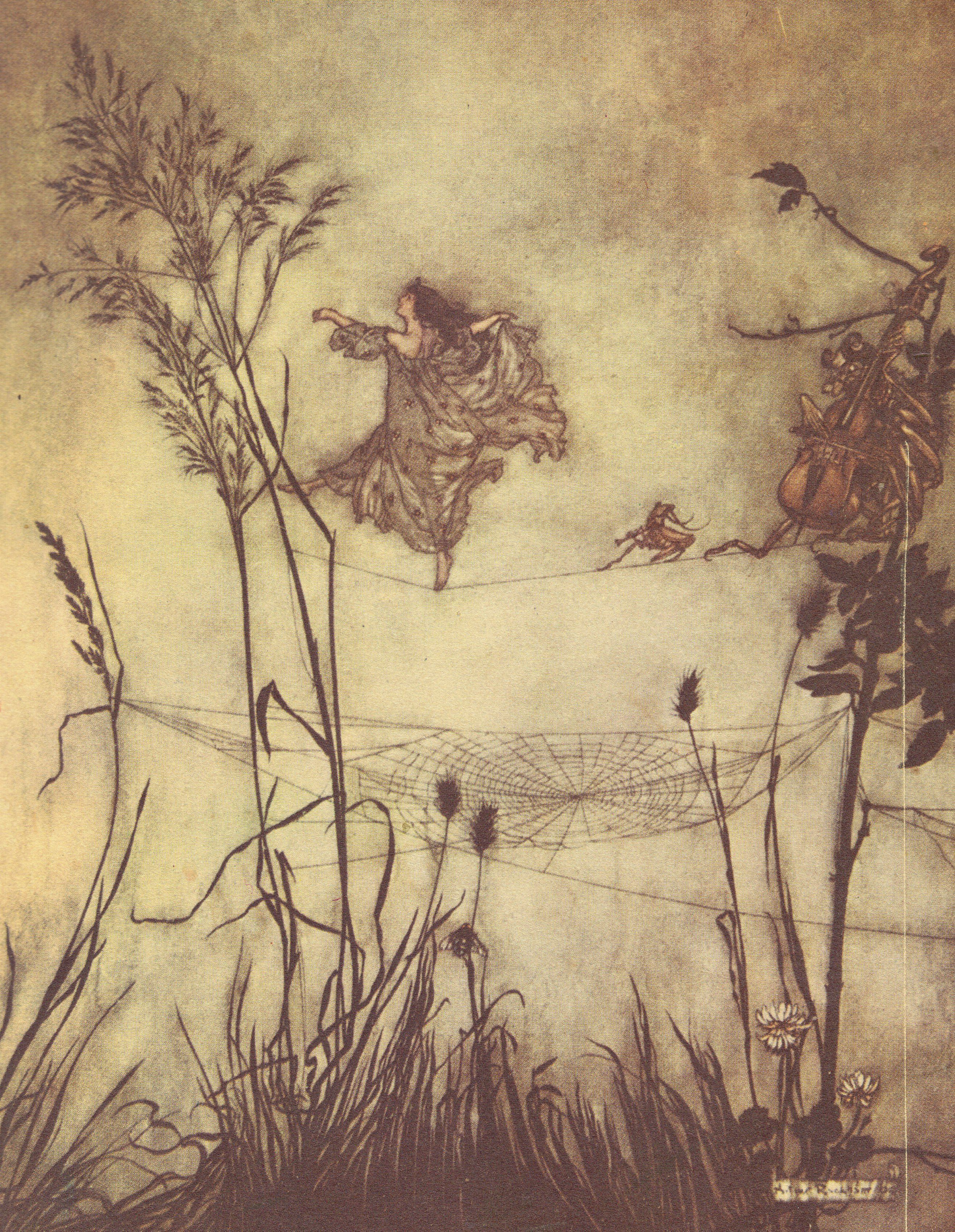 """Fairies Are Exquisite Dancers"" by Arthur Rackham. I've saved this for decades and no longer have the foggiest where it came from or how I came upon it. I just like looking at it."