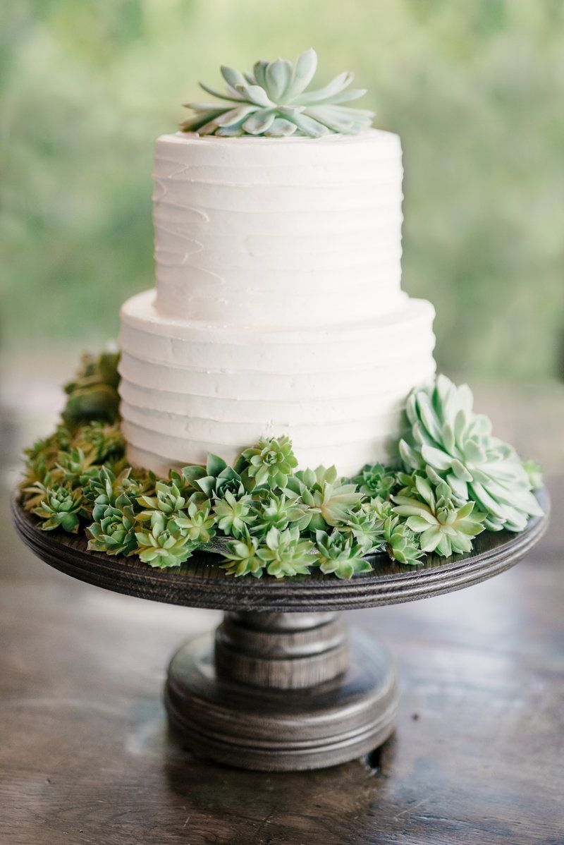 Steph Smith Weddings Succulent Cake Succulent Wedding Ideas Cake Inspiration Wedding Cake In Wedding Cake Boxes Simple Wedding Cake Succulent Wedding Cakes