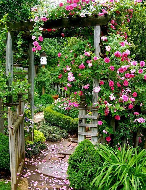 Photo of P O T A G E R: 5 Garden Photo Ideas to Steal From the Pros