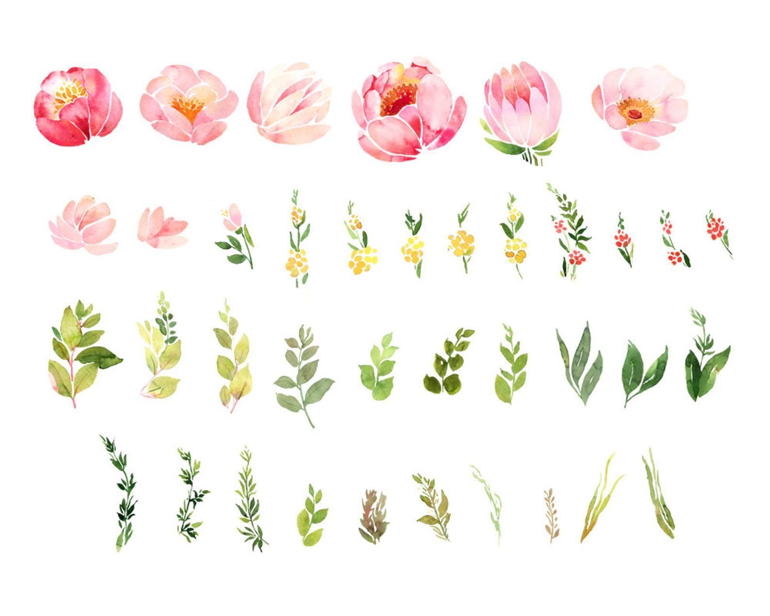 Roses Watercolor Clip Art Flower Clipart Watercolor Bouquet Etsy