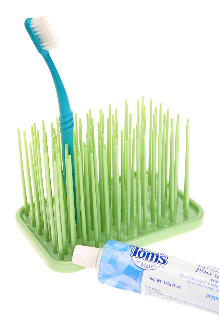 Grassy Green Toothbrush Holder Brushing Teeth Toothbrush Holder Bathroom Kids