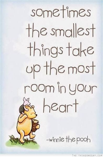 Image result for poohisms quotes
