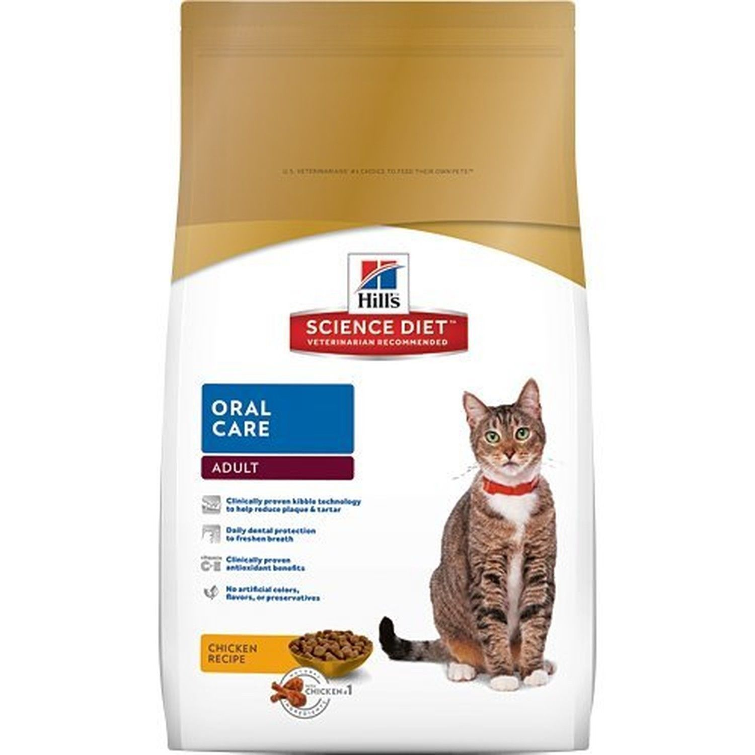 Can Dogs Eat Iams Dry Cat Food