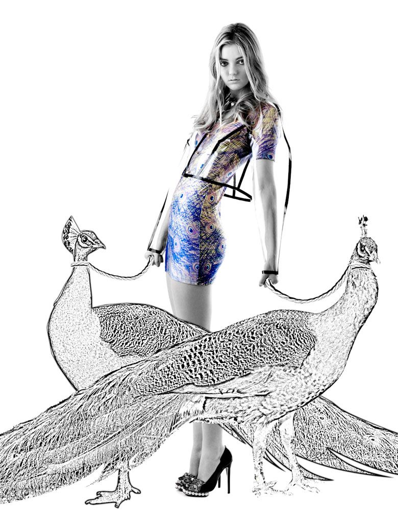 Photo with added elements to create an overall concept. Great harmony of the peacock dress and animals.