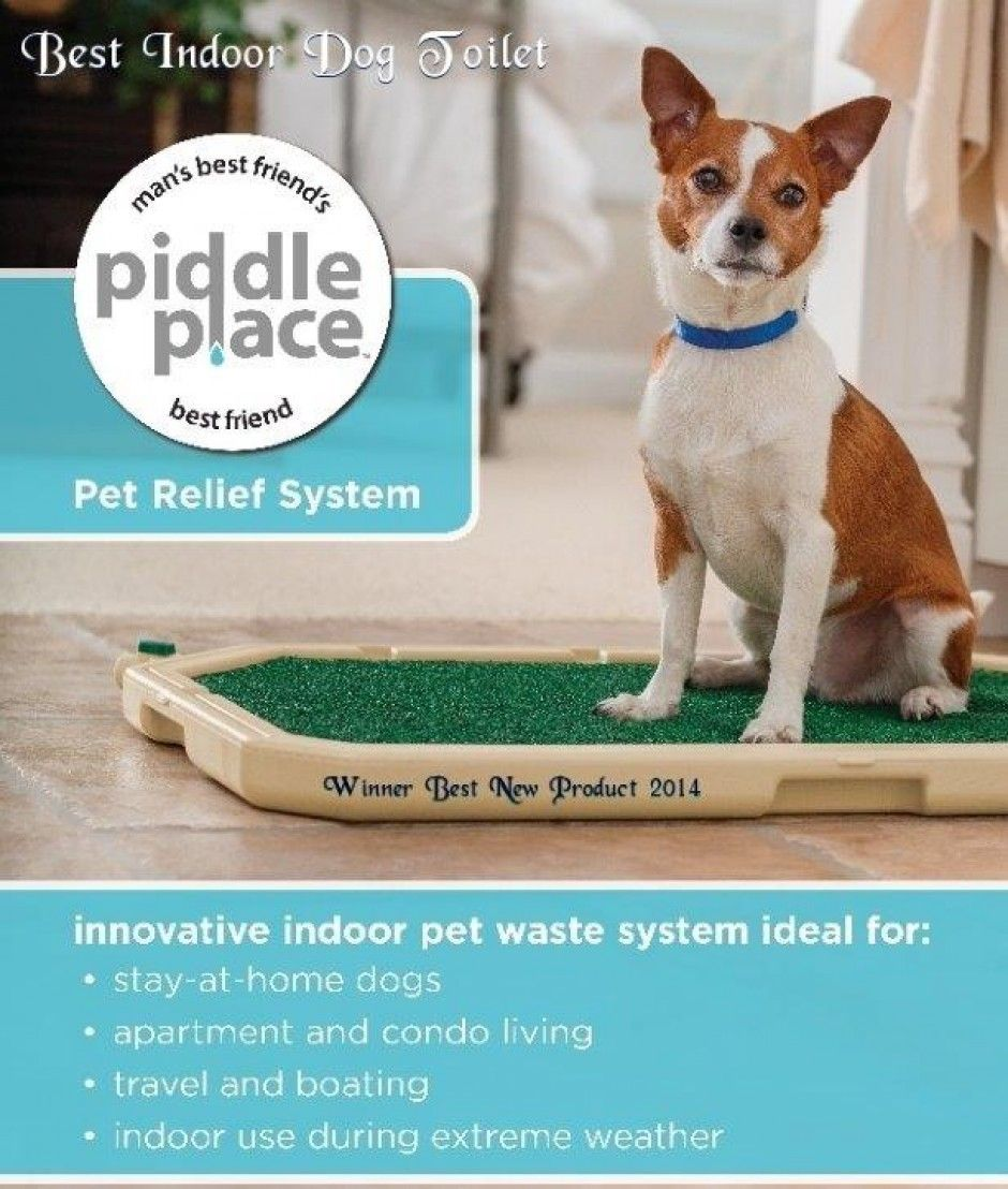 Dog Toilet Training Puppy Potty Training With Piddle Place Puppy