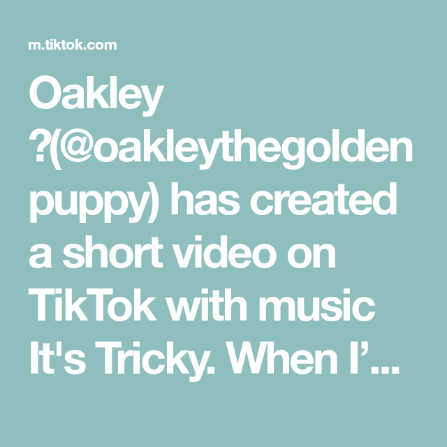 Oakley Oakleythegoldenpuppy Has Created A Short Video On Tiktok With Music It S Tricky When I M A Professional Jammer Music Shake Music Is Life Musi