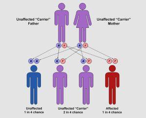 Thalassemia and Astrology  #bigumbrella #everythingwithin #Astrology #Thalassemia