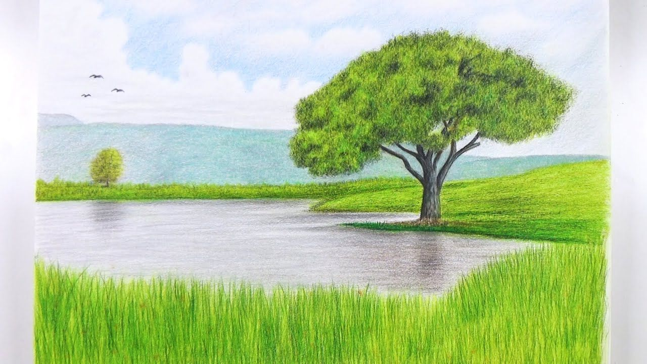 How To Draw A Landscape With Colored Pencils Tree Drawing Speed Dra Tree Drawing Pencil Trees Landscape