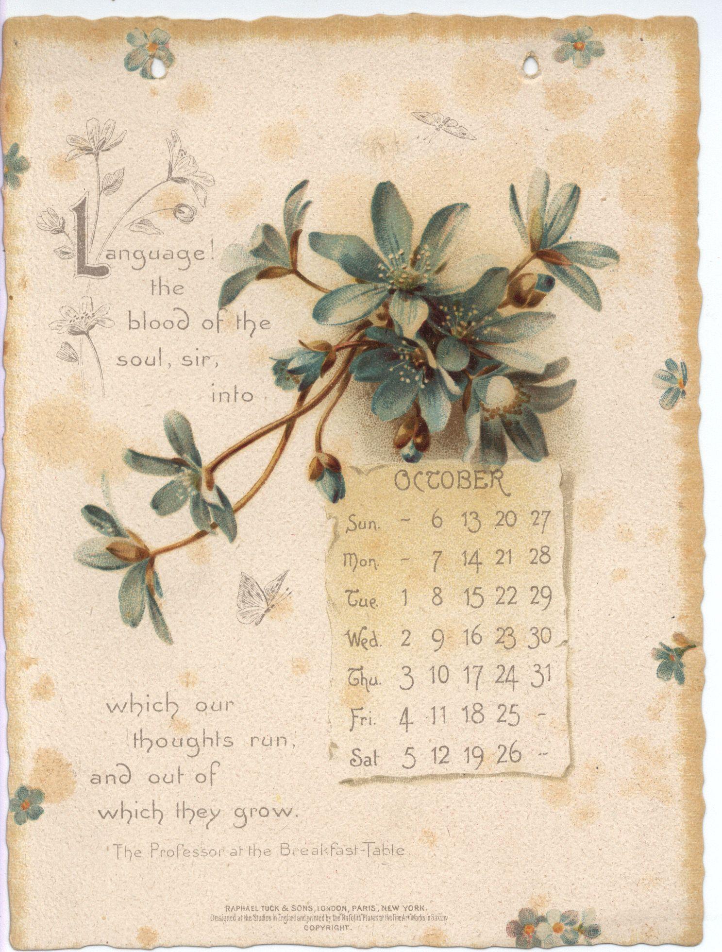 Oliver Wendell Holmes Calendar For 1895 Vintage Calendar