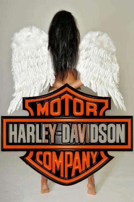 My new hobby – ridin' on the back of a Harley – bucket list item checked!!!!  Ve…