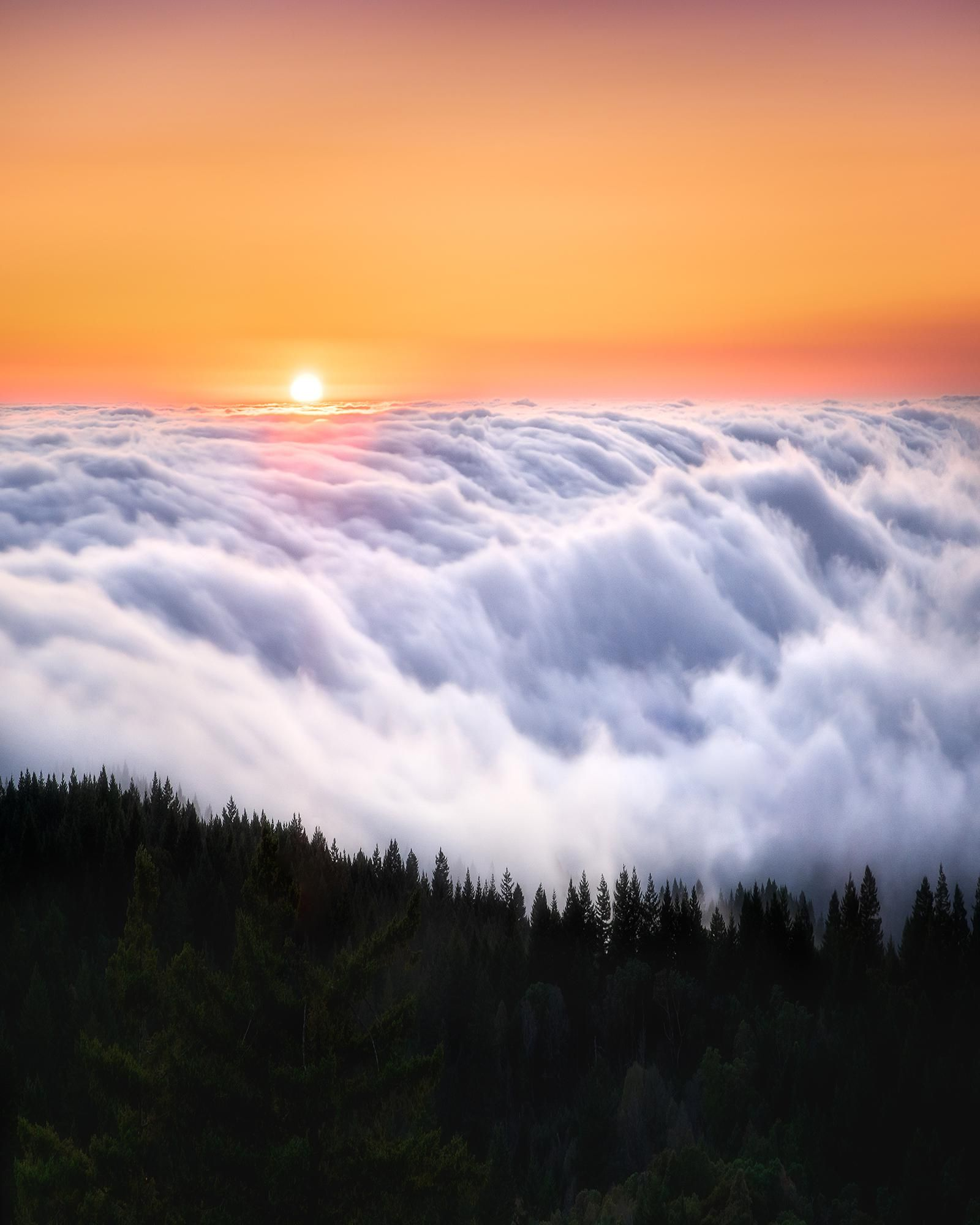 Itap Of A Sunset That Looks Like The Indian Flag Theurbanvoyager Photo Background Editor Wallpaper Above The Clouds Sky Aesthetic Landscape Photography