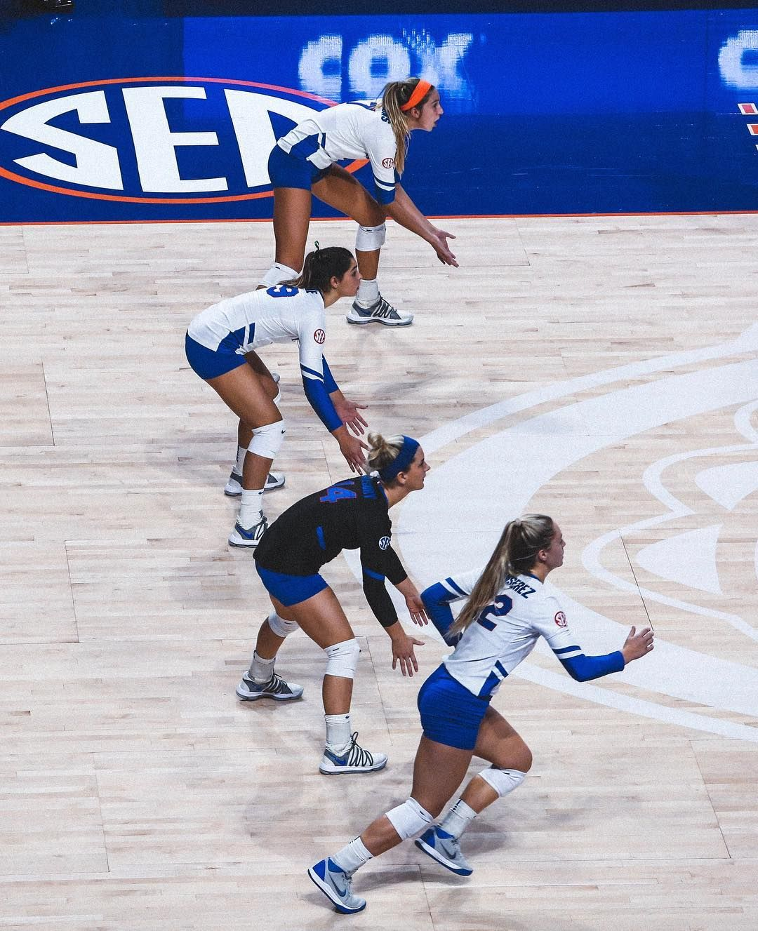 Defense Gogators Volleyball Outfits Women Volleyball Volleyball Photography