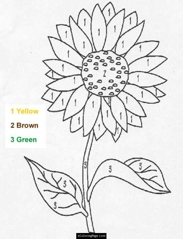 Color By Number Sunflower Coloring Page For Kids Printable Sunflower Coloring Pages Sunflower Stencil Flower Coloring Pages