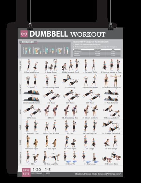 Dumbbell Exercise Workout Poster - Laminated - 19x27 #dumbbellexercises