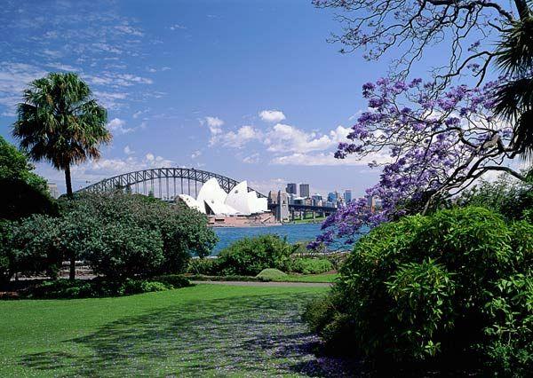 Royal Botanical Gardens Sydney Pretty Wedding Stuff Pinterest Sydney Sydney Australia