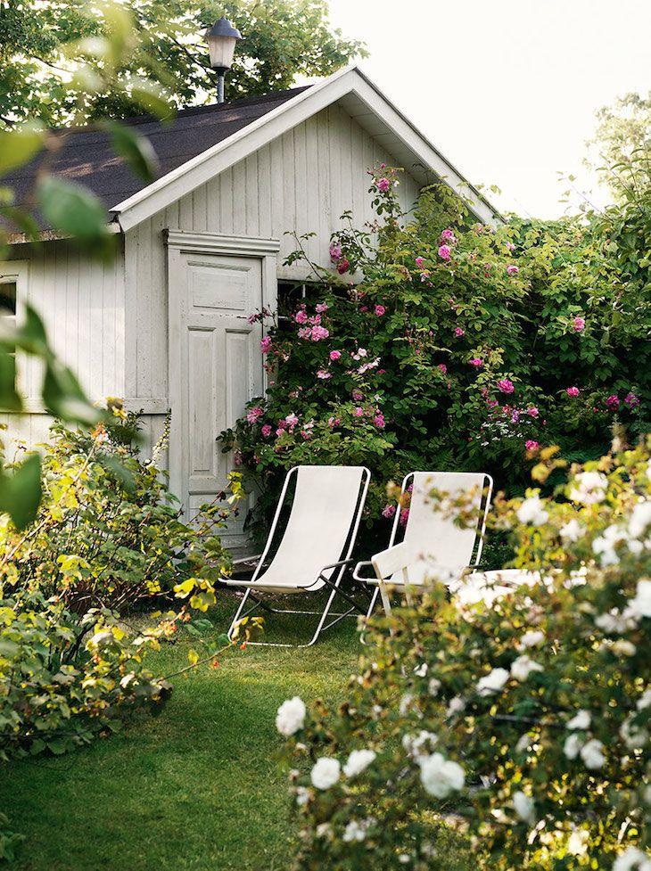 rosas - jardín foto Bindel Petra Exterior Pinterest Jardines