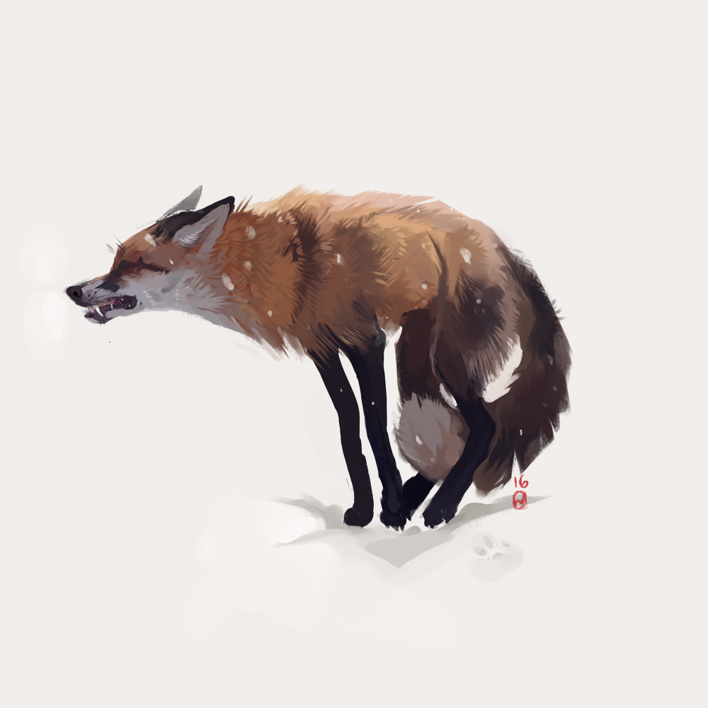 She Did Not Growl In Anger But In Fear For Her Children Canine Art Fox Art Fox Artwork