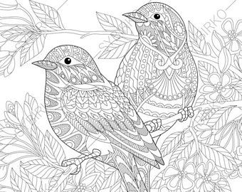 Coloring Pages For Adults Bird. Swan Birds  Adult Coloring Book Page Zentangle Doodle Pages