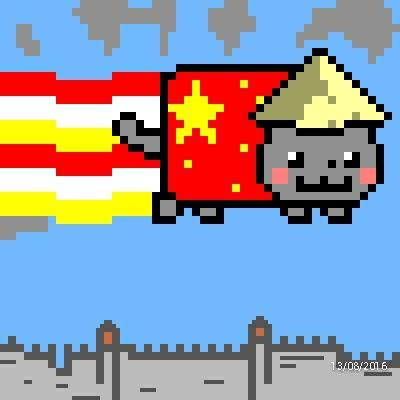 Chinese nyan cat | Nyan cat | Nyan cat, Cats, Pusheen