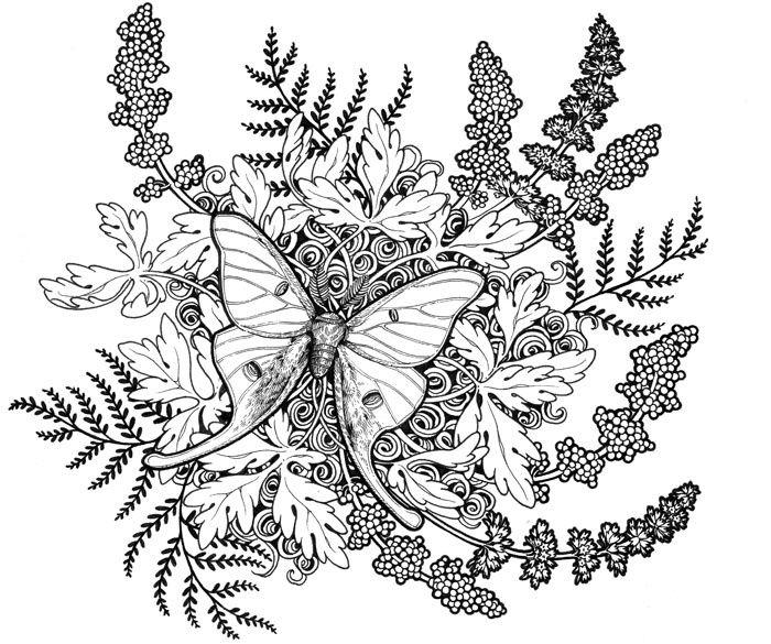 Luna Moth Tattoo Designs Visit Eva Sangnoir Deviantart Com