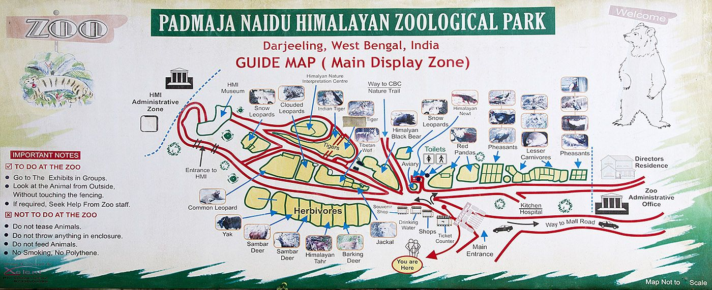 a guide map of the padmaja naidu himalayan zoological park  - a guide map of the padmaja naidu himalayan zoological park darjeeling