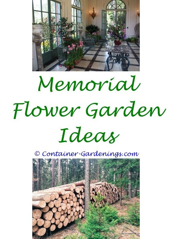 maintenance free garden ideas australia - modern garden design ideas ...