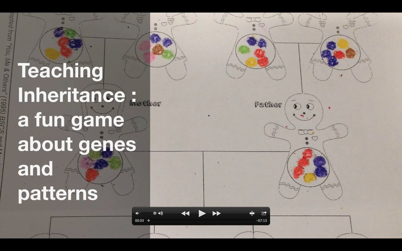 Inheritance Game Fun Activity For Study Of Genetics And Dna In