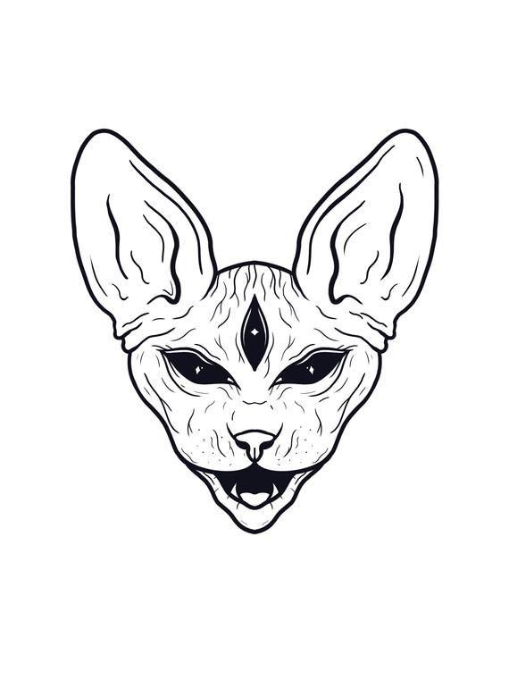 A5 Art Print - Sphynx Cat