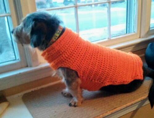 Easy dog sweater free crochet pattern | Crochet Favorites ...