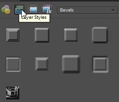 Instalación de Estilos de capa con .xml ya previstas: Photoshop Elements 8 - Scrapbook-Bytes | Foro digital Scrapbooking