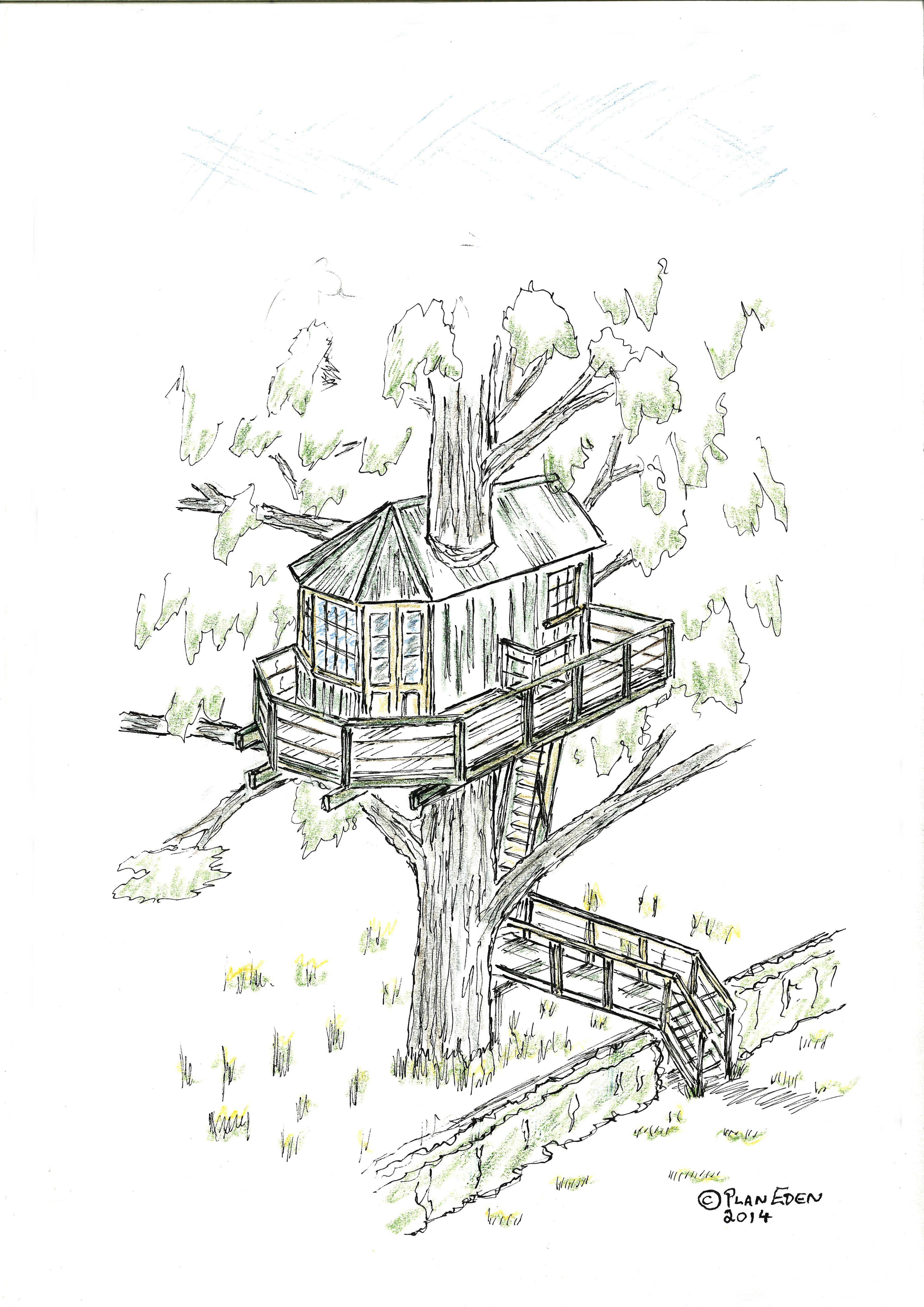 Red House Drawing: Tree House Sketch Design To Irish Garden