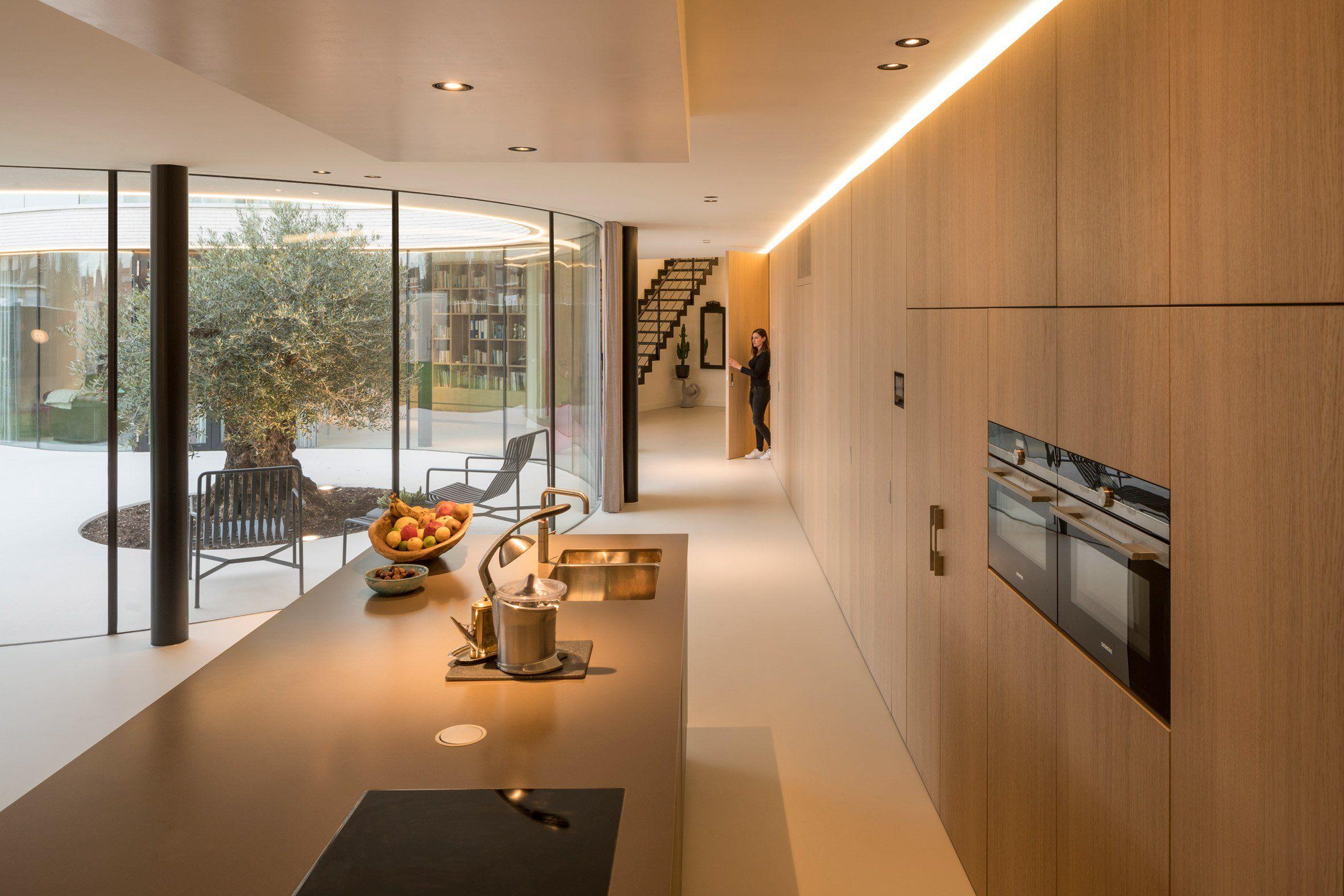 MVRDV wraps glass facade of Rotterdam house around a mature olive ...