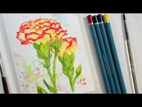 Step By Step Watercolor Tutorial Watercolor Pencils Techniques