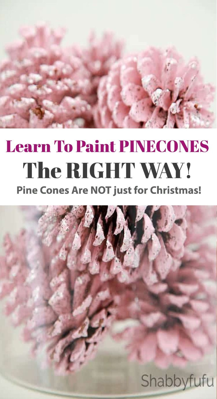 Learn The Right Way To Paint Pinecones! #pineconeflowers