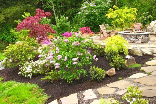 Backyard Landscape Design   Garden Bed