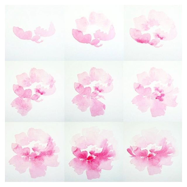 Day 4 100 peony step by step the100dayproject for Watercolor tutorials step by step
