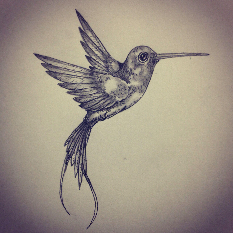 Hummingbird Tattoo Sketch Art Sketches - Pieces And Pics