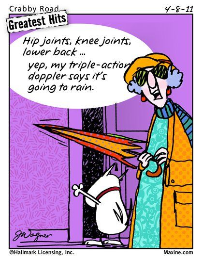 Maxine: Hip joints, knee joints, lower back... yep, my triple-action doppler says it's going to rain.